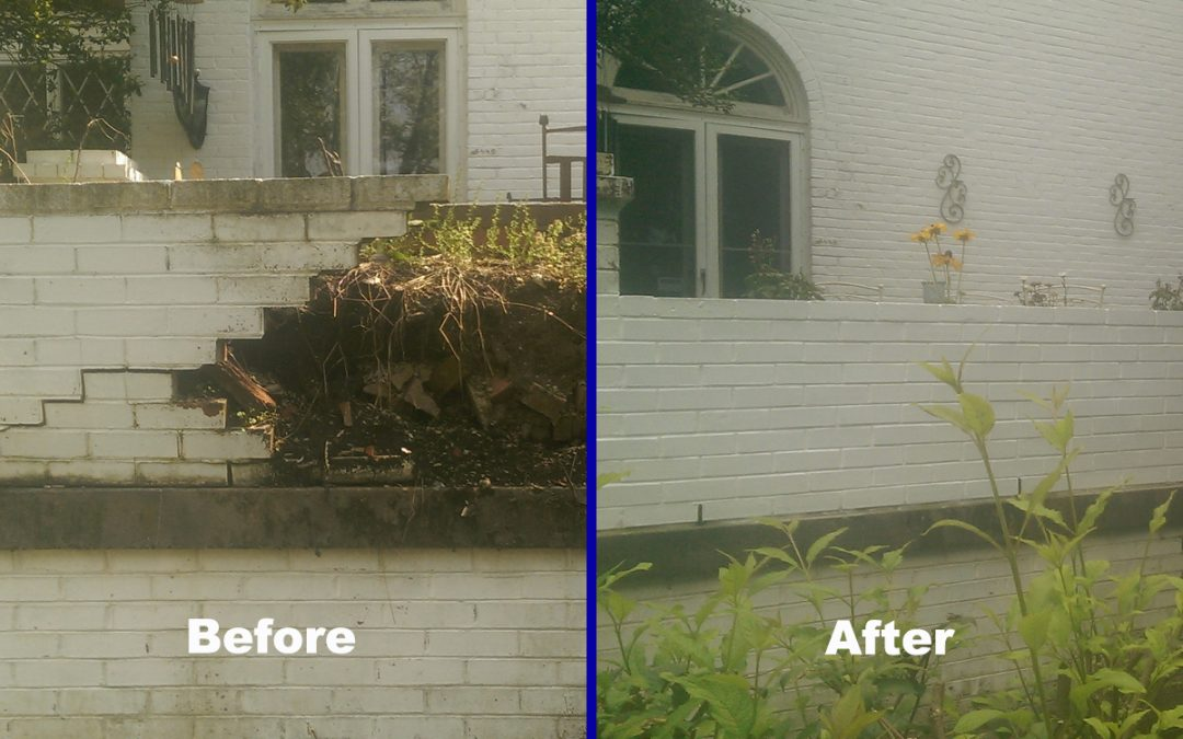 Brick Wall (Before & After)